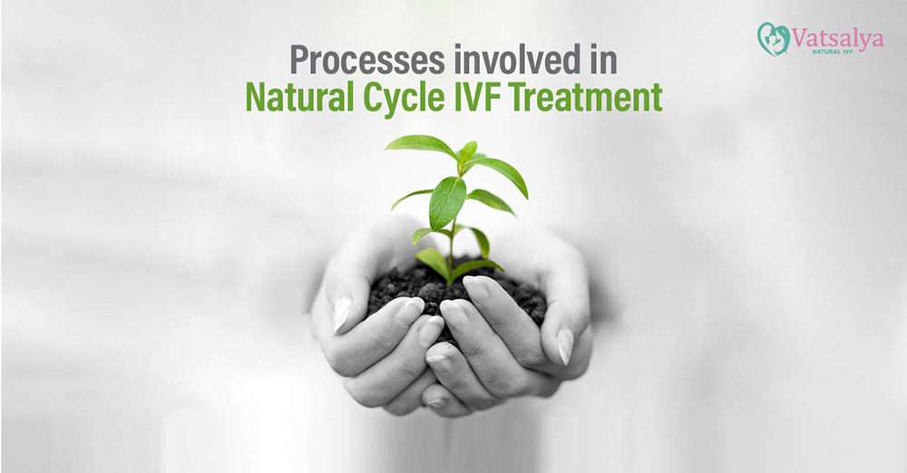 Processes involved in Natural Cycle IVF Treatment